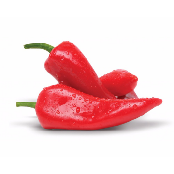 Red capsicum peppers